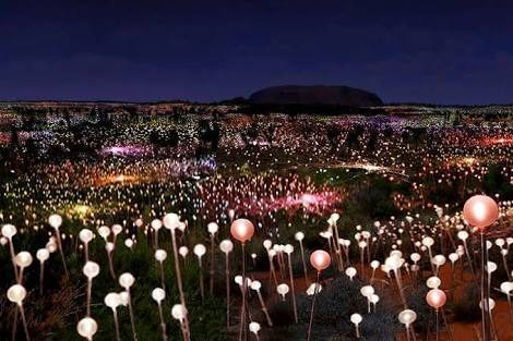 Field of Light installation