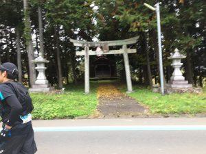 Random tori gate